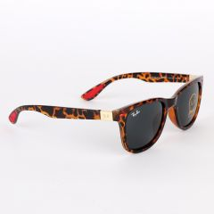 Ray-Ban Luxury Round Frame Leopard Skin Sunglasses